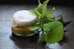 ※蕗の薹味噌3.JPG