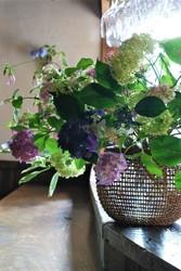 紫陽花いろいろ木通籠1.jpg