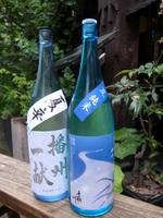 限定日本酒1.JPG