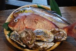 鯛・鰤・牡蠣.jpg