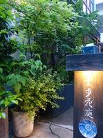 五月の夕方2.jpg