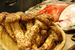 松茸と鮮魚2.JPG