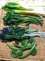 湯がき山菜.jpg