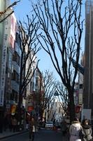 神楽坂通り.jpg