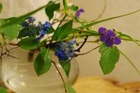 金魚鉢紫陽花.JPG